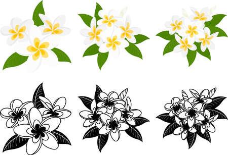 The cute icons of frangipani