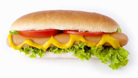 perro comiendo: hot dog aislado en blanco