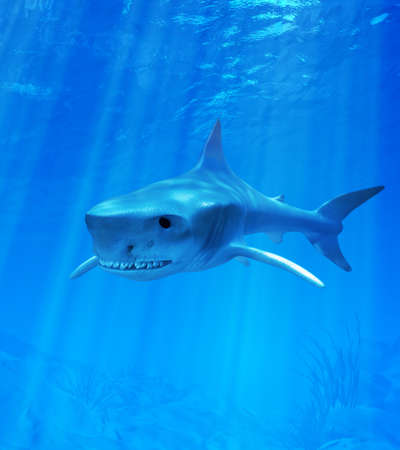 wather: Shark in blue wather   3d render Stock Photo