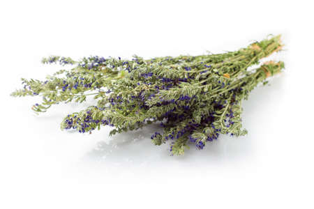 hyssop: Dried hyssop herb isolated on white Stock Photo