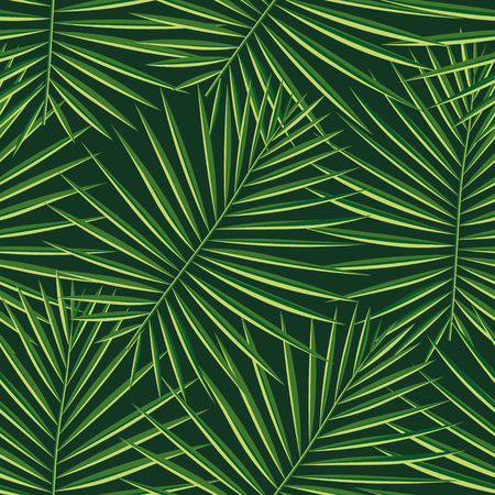 Tropical palm leaves pattern seamless background. Exotic fashion trendy floral foliage pattern. Seamless beautiful botany palm tree summer decoration design.Vector pattern print for swimwear wrapping