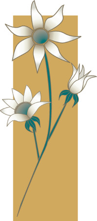 Flannel Flowers Фото со стока - 1156083