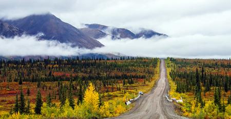 denali: Alaskas Denali Highway Route 8 in fall