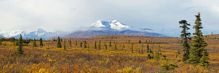 gunsight: Snow capped Gunsight mountain along the Glenn Highway in Alaska