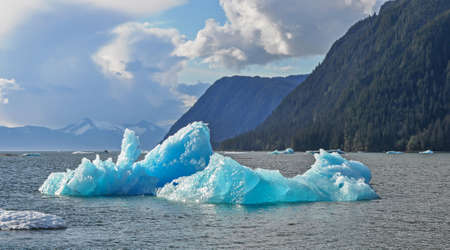 southeast alaska: Ice bergs from the Le Conte Glacier at the entrance to LeConte Bay near Frederick Sound in Southeast Alaska
