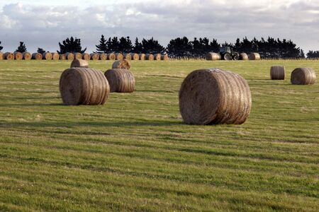 Bales of hay Stock Photo - 375845