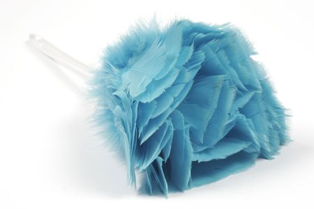 Feather Duster Stock Photo