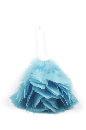 Feather duster Stock Photo - 424269