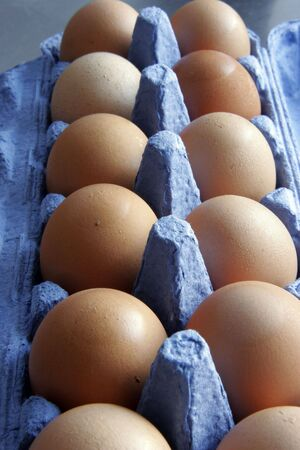 Dozen eggs Stock Photo - 566719