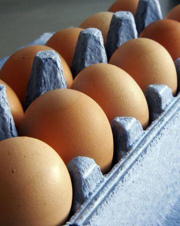 Eggs in carton Stock Photo - 566720