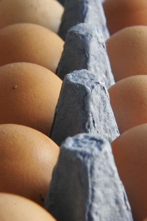 Eggs Stock Photo - 589494
