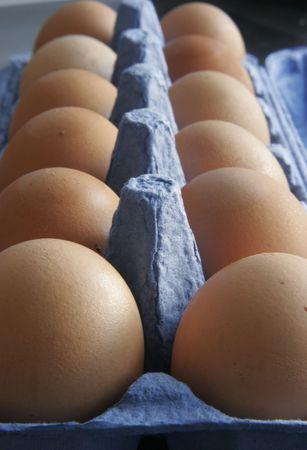 Dozen eggs Stock Photo - 589484