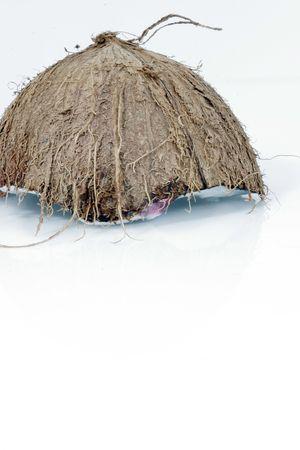 Coconut shell Stock Photo - 589488
