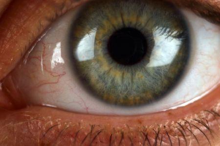 Extreme Close Up de ojo humano que muestra las venas, los alumnos