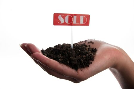 Sold sign and soil in hand isolated on white background