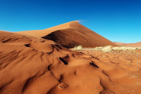 enviromnment: Red sand Dunes of Namibia