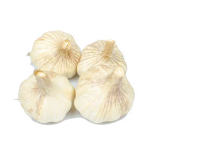 ingredient: Isolated garlic, the ingredient