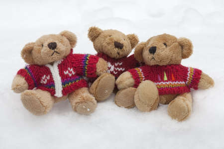 Teddy bears with colourful knitted jumpers in the snow