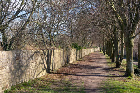 Footpath and trees along the ramparts in Bergues, northern France Stock Photo