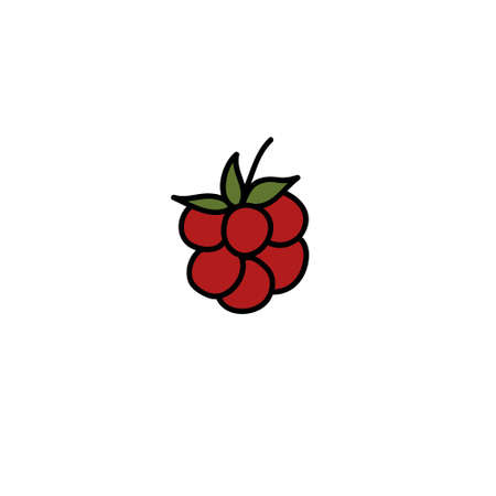 raspberry doodle icon, vector color illustration