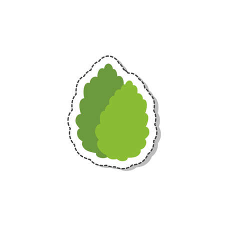 stevia flat icon, vector color illustration