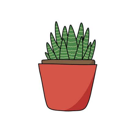 sansevieria doodle icon, vector illustration