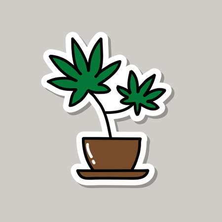 marijuana plant doodle icon sticker, vector illustration Banco de Imagens - 150559651