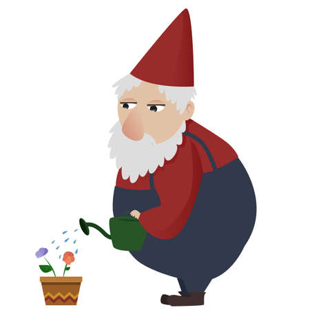 Classic garden gnome giving water to flowers Illustration
