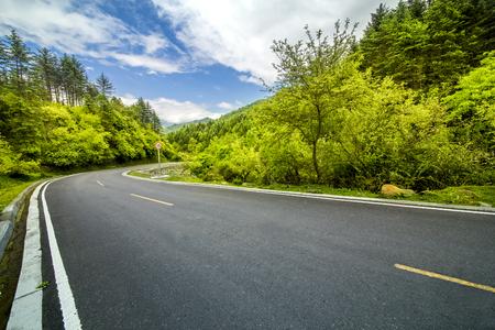 Woodland asphalt Road