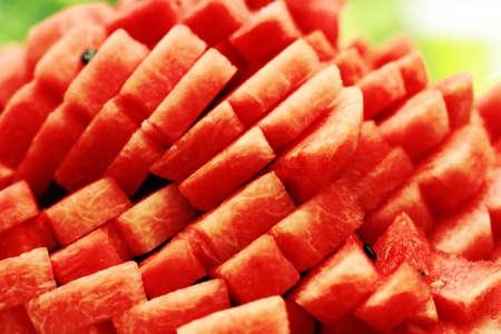water melon,citrullus lanatus mats & nakai