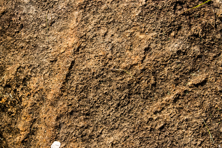 dirt texture: Brown ground natural background Stock Photo
