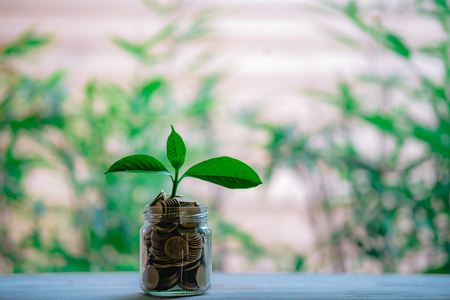 Glass jar with coins Plant seedlings grow on bottles - investment ideas for growth