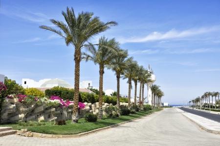 el sheikh: The resort area of Sharm El Sheikh