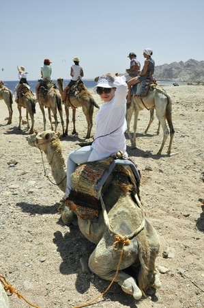 means of transportation: Means of transportation in the desert, a woman sits astride a camel