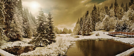 Panorama of a winter morning in the Carpathians photo
