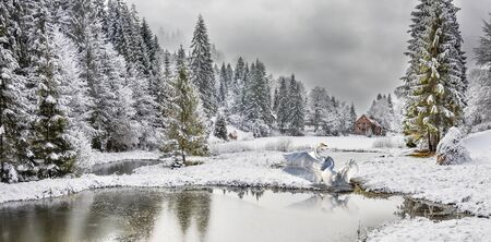 Winterwald in den Karpaten am Bergsee Vita, Mizhhirya Standard-Bild