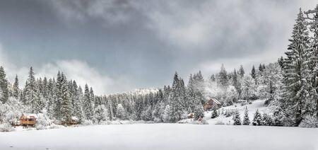 Winter forest in the Carpathians on the mountain lake Vita, Mizhhirya