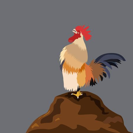 chicken rooster crowing