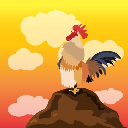 crowing: chicken rooster crowing