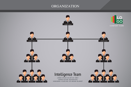 Organization Chart Infographics Illustration