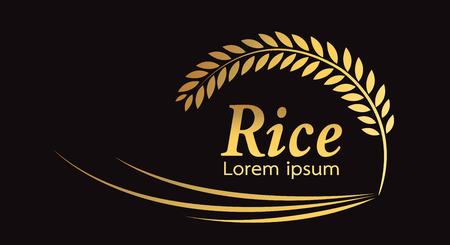 grain organic natural product ,Rice gold , rice. Standard-Bild - 120785624