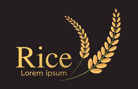 grain organic natural product ,rice icon,vector design