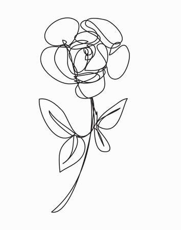 rose Flower  ,line drawing style,  art design