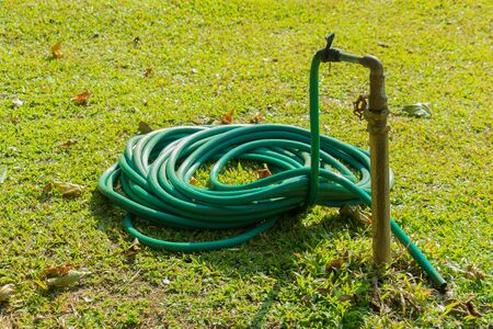 water rubber hose on green lawn