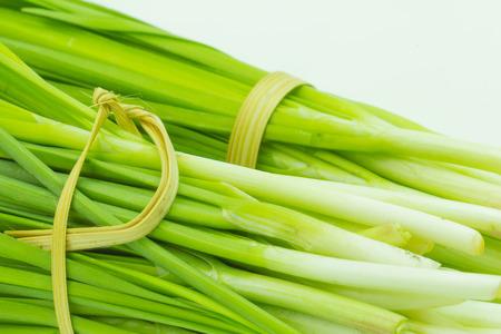 cebollines: El ajo cebollino fresco vegetal, cebollino ajo blanco