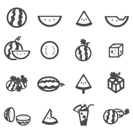 watermelon melon cantaloupe icon set vector