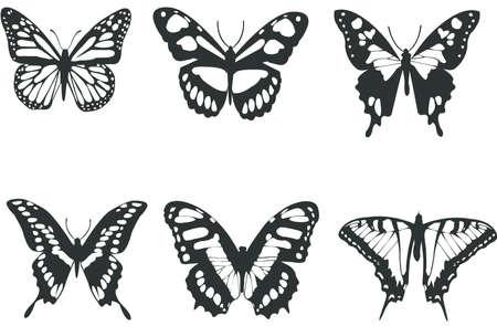 tatuaje mariposa: Colecci�n de mariposas en blanco y negro para el dise�o aislado en blanco (vector)