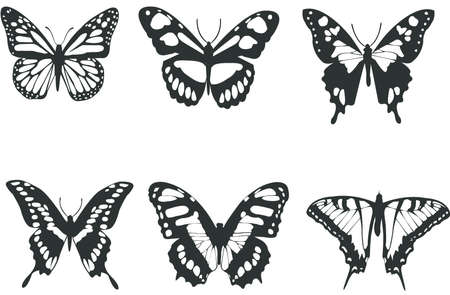 butterfly tattoo: Collection black and white butterflies for design isolated on white (vector)