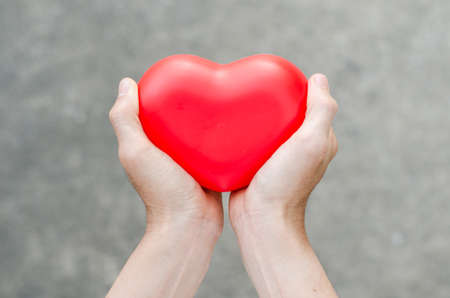 Red heart in man hands photo