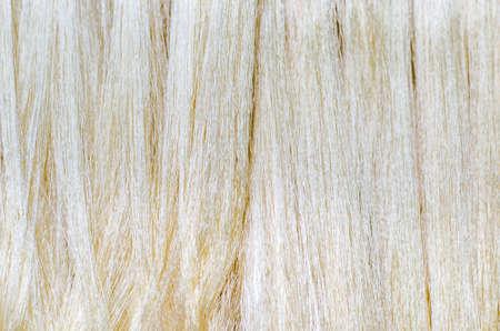 silk thread: Raw silk thread in the silk farm is background Stock Photo